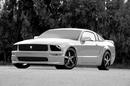 Lexani_Grille_Mustang edited.jpg